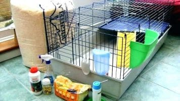Best Cage for Indoor Rabbits