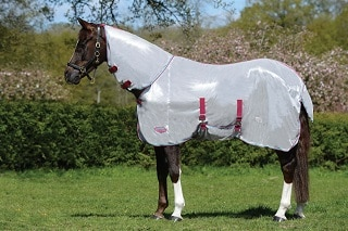 Best-Fly-Sheets-for-Horses