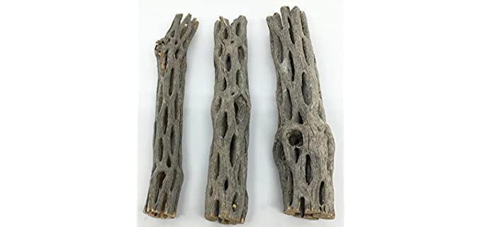 Awesome Aquatic Cholla Wood - Food for Hermit Crabs