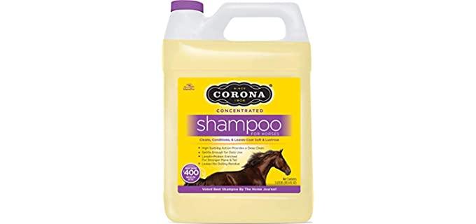 Corona Premium - Horse's Shampoo