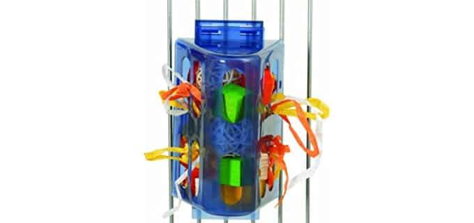 Paradise Toys Creative Foraging System - Bird Toy