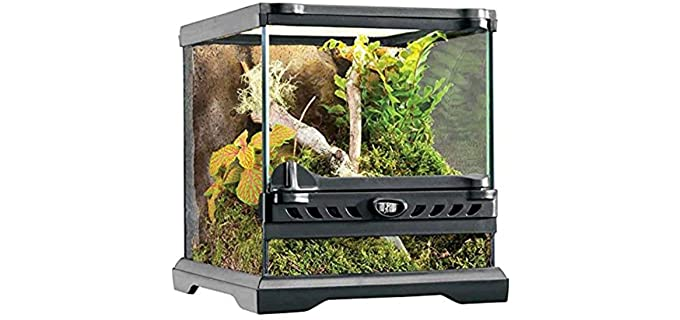 Exo Terra Natural Terrarium - Enclosure for Corn Snakes