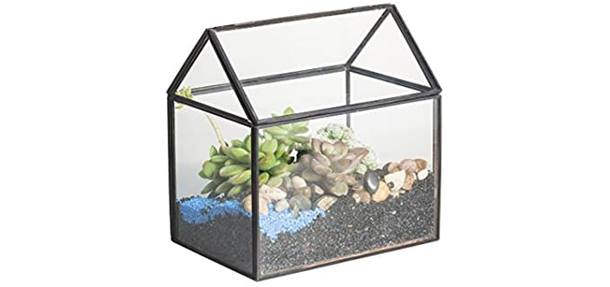 NYCP Glass Terrarium - Habitat for A Hermit Crab