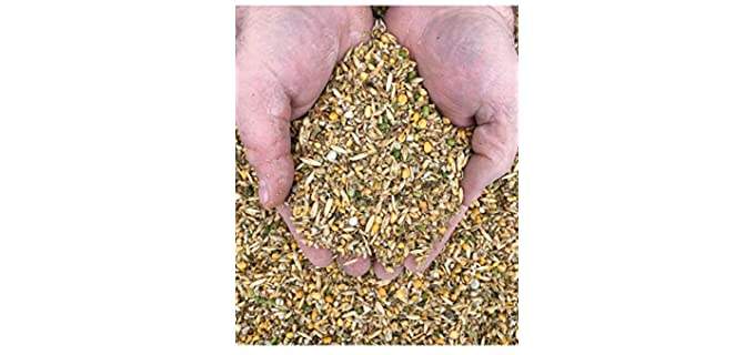 New Country Organics Soy-Free, Corn-Free Layer Feed - Feed for Chickens