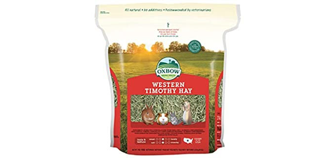 Oxbow Western Timothy Hay - Food for Guinea Pigs