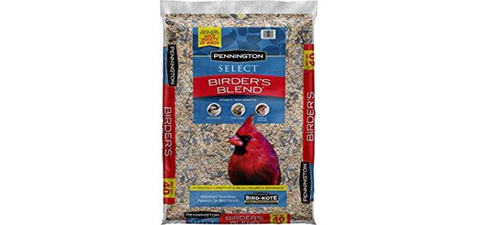 Pennington Select Birder's Blend - Bird Feed