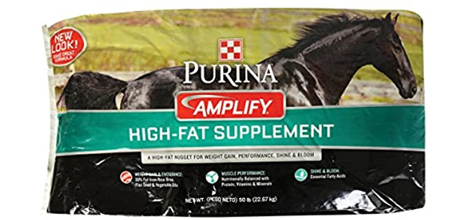 Purina Animal Nutrition Amplify Equine Supplement - Horse Food for Weight Gain