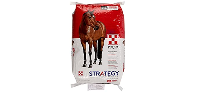 Purina Strategy Professional Formula GX Pellet - Weight Boost Horse Feed