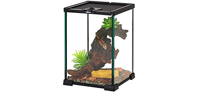 Repti Zoo Mini Reptile Glass Terrarium - Corn Snake Enclosures