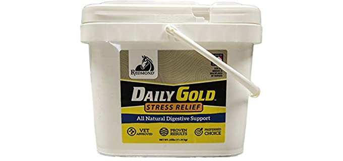 RADMOND Daily Gold Stress Relief - Horse Calming Supplements