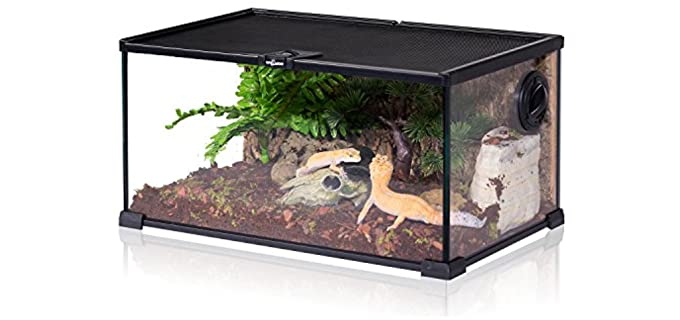 REPTI ZOO Mini Reptile Glass Terrarium - Habitat for A Hermit Crab