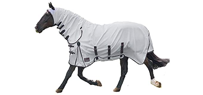 Shires Sweet-Itch Combo Fly Sheet - Horse's Fly Sheet