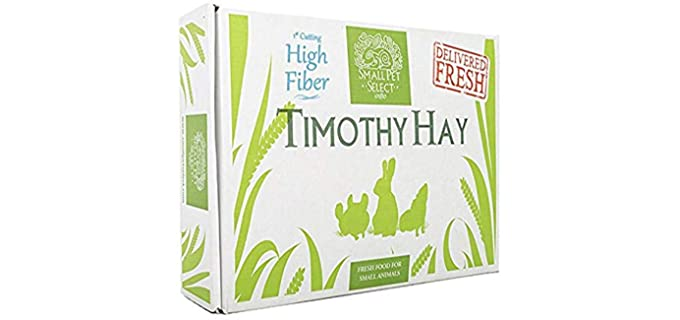 Small Pet Select 1st Cutting Timothy Hay - Rabbit Hay