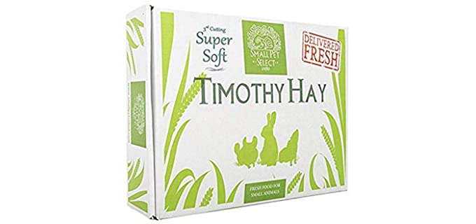 Small Pet Select 3rd Cutting Timothy Hay - Hay for Rabbits