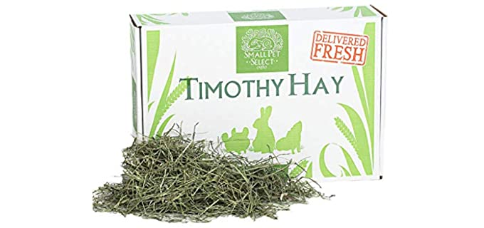Small Pet Select 2nd Cutting Timothy Hay - Healthy Hay for Rabbits