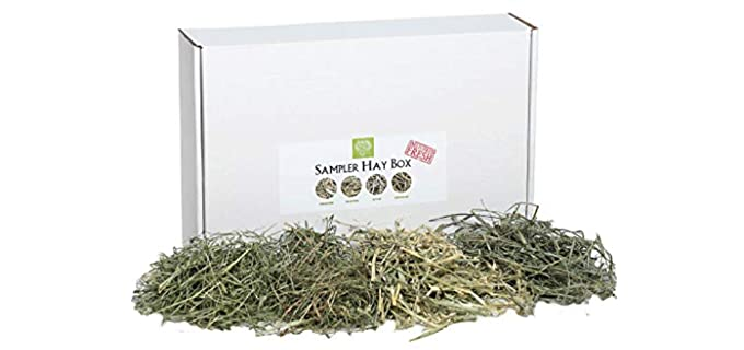 Small Pet Select Sampler Box - Hay for Rabbits