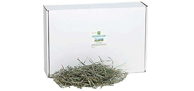 Small Pet Select Orchard Grass Hay - Rabbit Hay