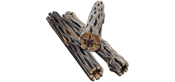 SunGrow Cholla Wood - Hermit Crab Food